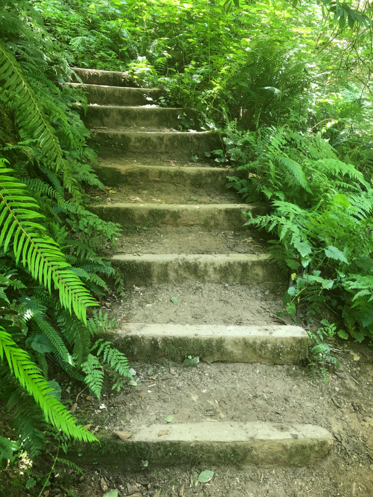 stairs for transpersonal life coaching